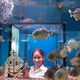 mgl_oceanarium_4782.jpg
