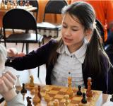 mgl_chess_april_2016-99.jpg