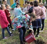 2019_05_tree_planting-13.jpg